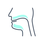 Ear, Nose, and Throat Procedures